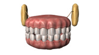 mouths teeth 3d model
