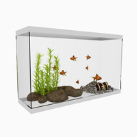 3d aquarium water plants model