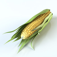 3ds realistic corn