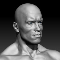 arnold schwarzenegger body 3d model