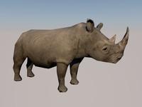 rhino africa 3d model