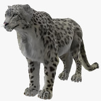 snow leopard fur 3d model