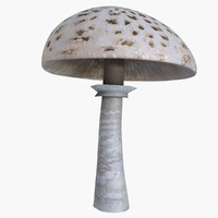 3d parasol mushroom model