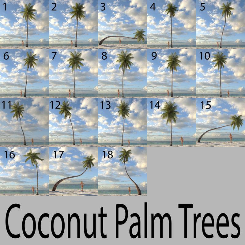 coconut_model_sheet.jpg