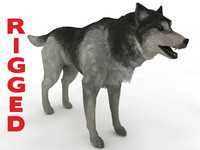 3d model husky rigged