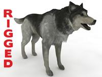 3d model husky rigged