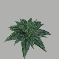 bush 2 3d fbx