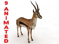 animate gazelle c4d
