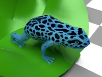 3ds max blue frog