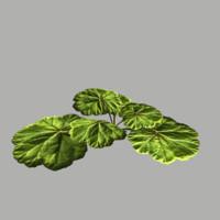 fbx bush 15