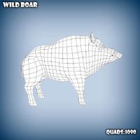 base mesh wild boar 3d model