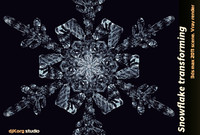 snowflake animation 3d max