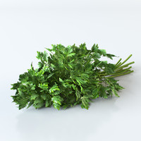 fbx parsley