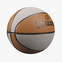 3d basketball splanding model