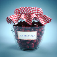 3d realistic jar cranberries