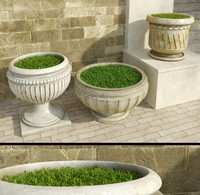 decorative outdoor grass 2 3d max