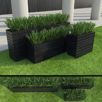 modern grasses set 3d max