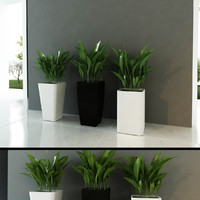 Contemporary Planters mini