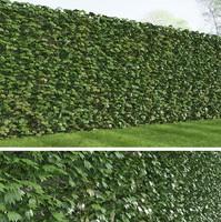 rich ivy 3d max