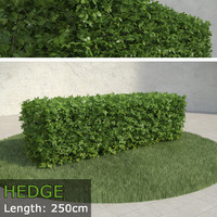 hedge max