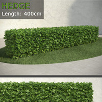 3d model of hedge 2