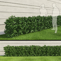 rectangular bush 3d model