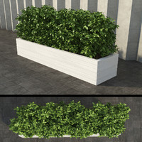 3d model rectangular bush 2