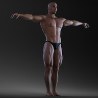 3d max body bodybuilder man