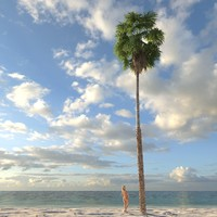 3ds max washingtonia palm tree