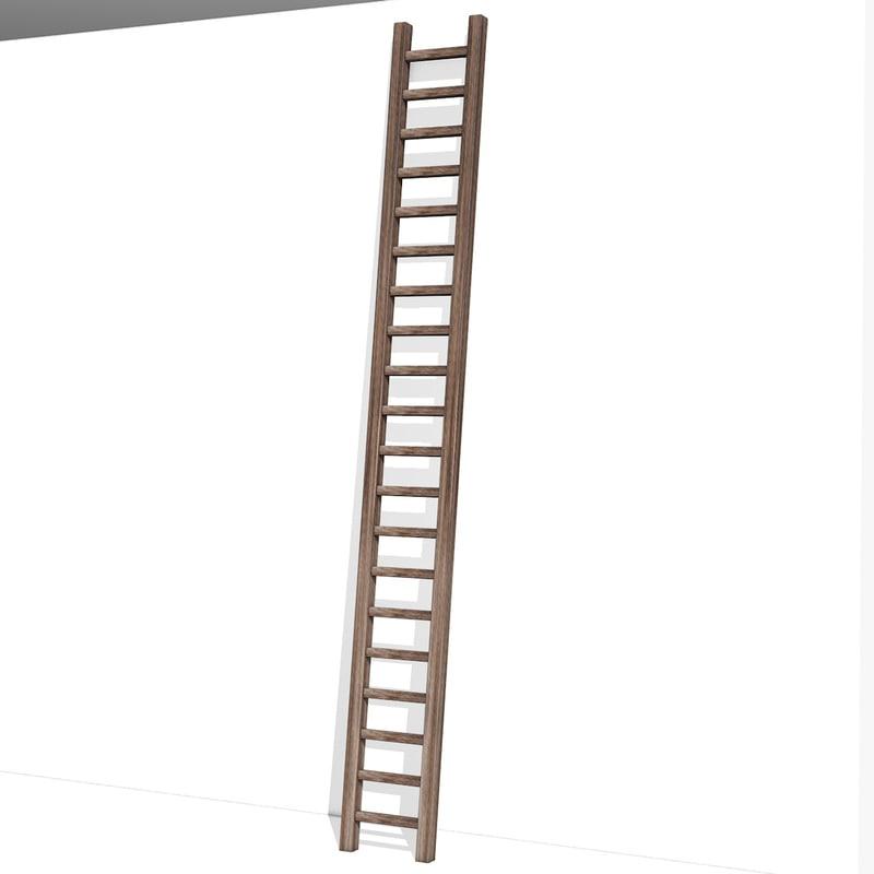 Wooden Ladder01.jpg