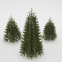 photorealistic fir-tree 3d max