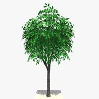 3ds max tree ready dae