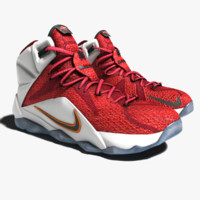3d model lebron james 12 shoes