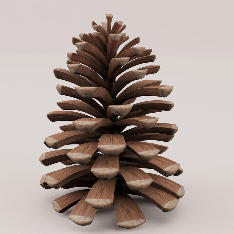Pine Cone-01.jpg