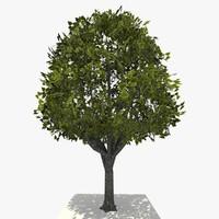 3dsmax tree ready dae