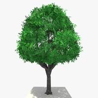 3d tree ready dae model