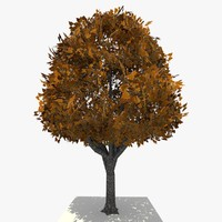 3d model tree ready dae