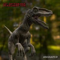 3d model dinosaur velociraptor
