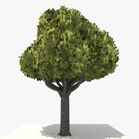 3dsmax tree 17