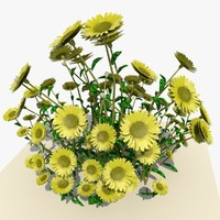 bunch daisy flowers 3d 3ds