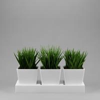 3ds max plant realistic flowerpot