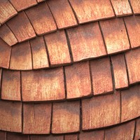 Roofing #07 Texture