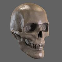 3dsmax zbrush skull