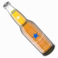max beer bottle clear