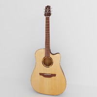 matte takamine acoustic guitar max