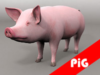 3dsmax pig