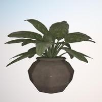 3d model plant 2