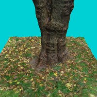 tree trunk 7 3d max