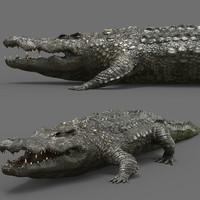 3dsmax crocodile croc cro