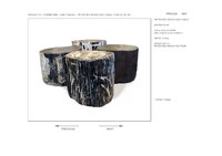 HUDSON PETRIFIED WOOD END TABLE